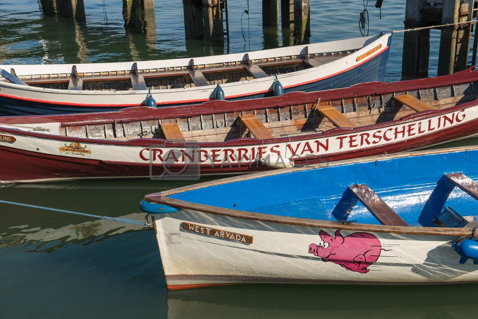 Colored rowing boats in the harbor of West Terschelling on the island of Terschelling in the Nether-lands
