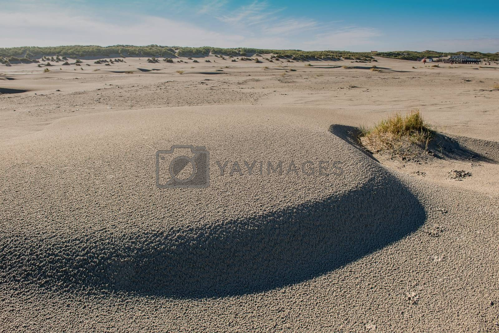 Beach on the island of Terschelling in the Netherlands