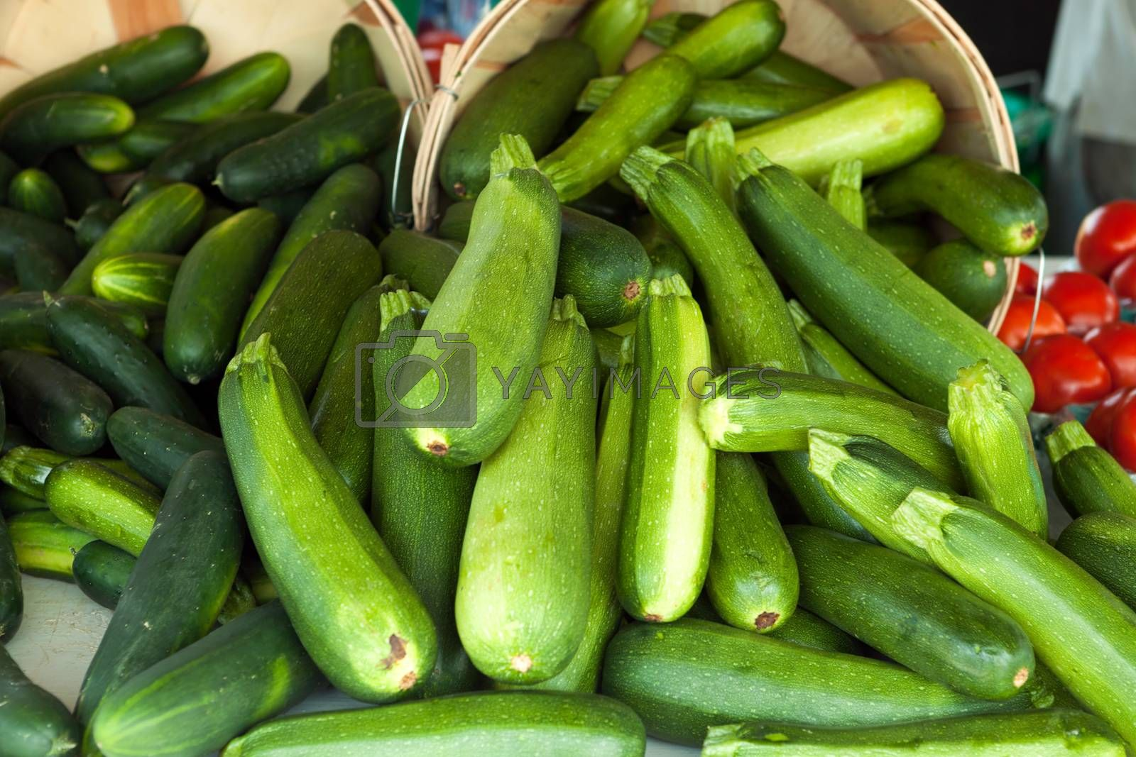 Zucchini squash on display at the farmers market. Shallow depth of field.