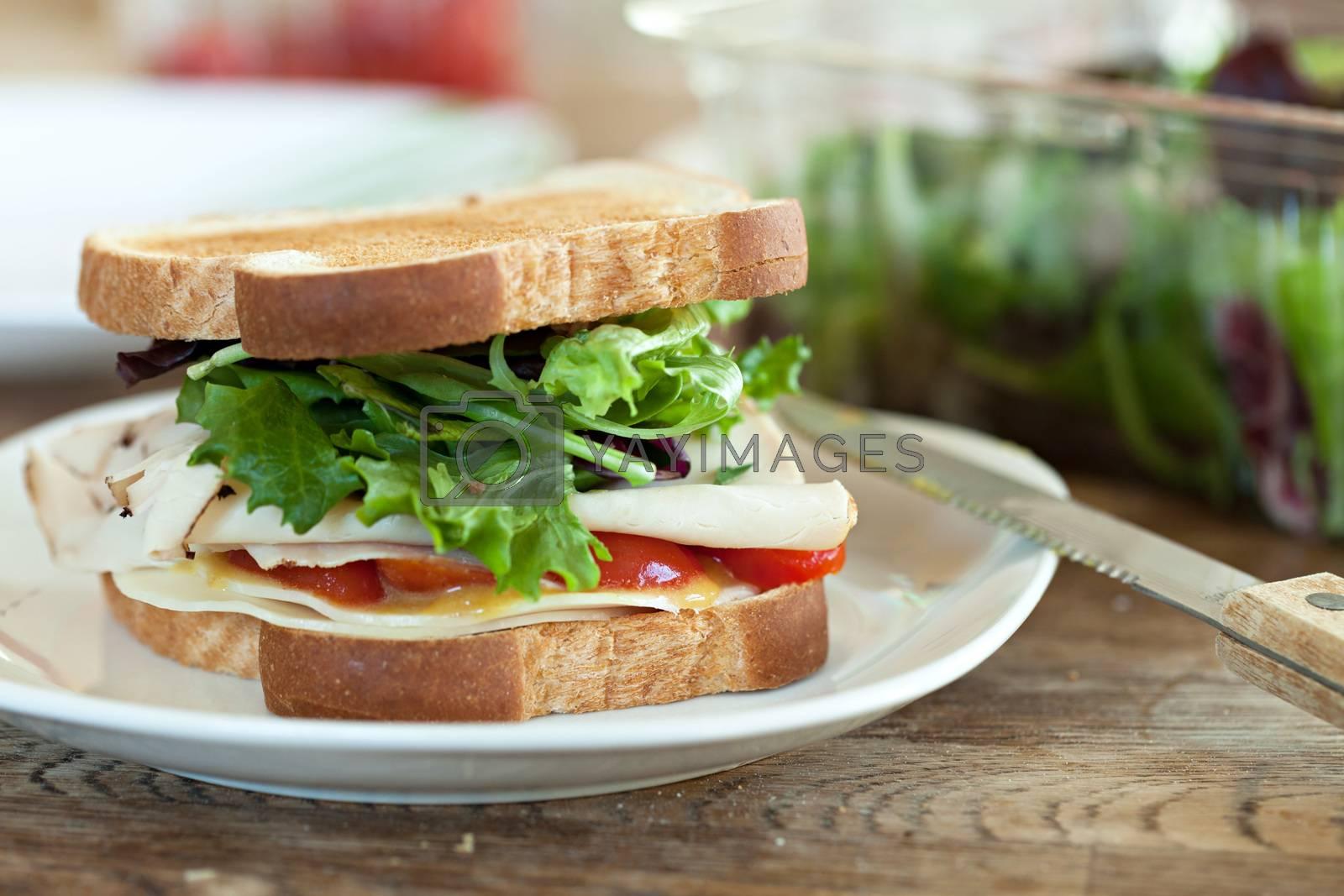 Turkey Sandwich by graficallyminded