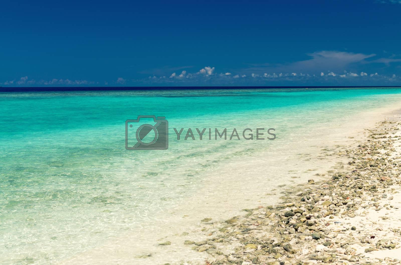 Crystal clear sea of tropical island.