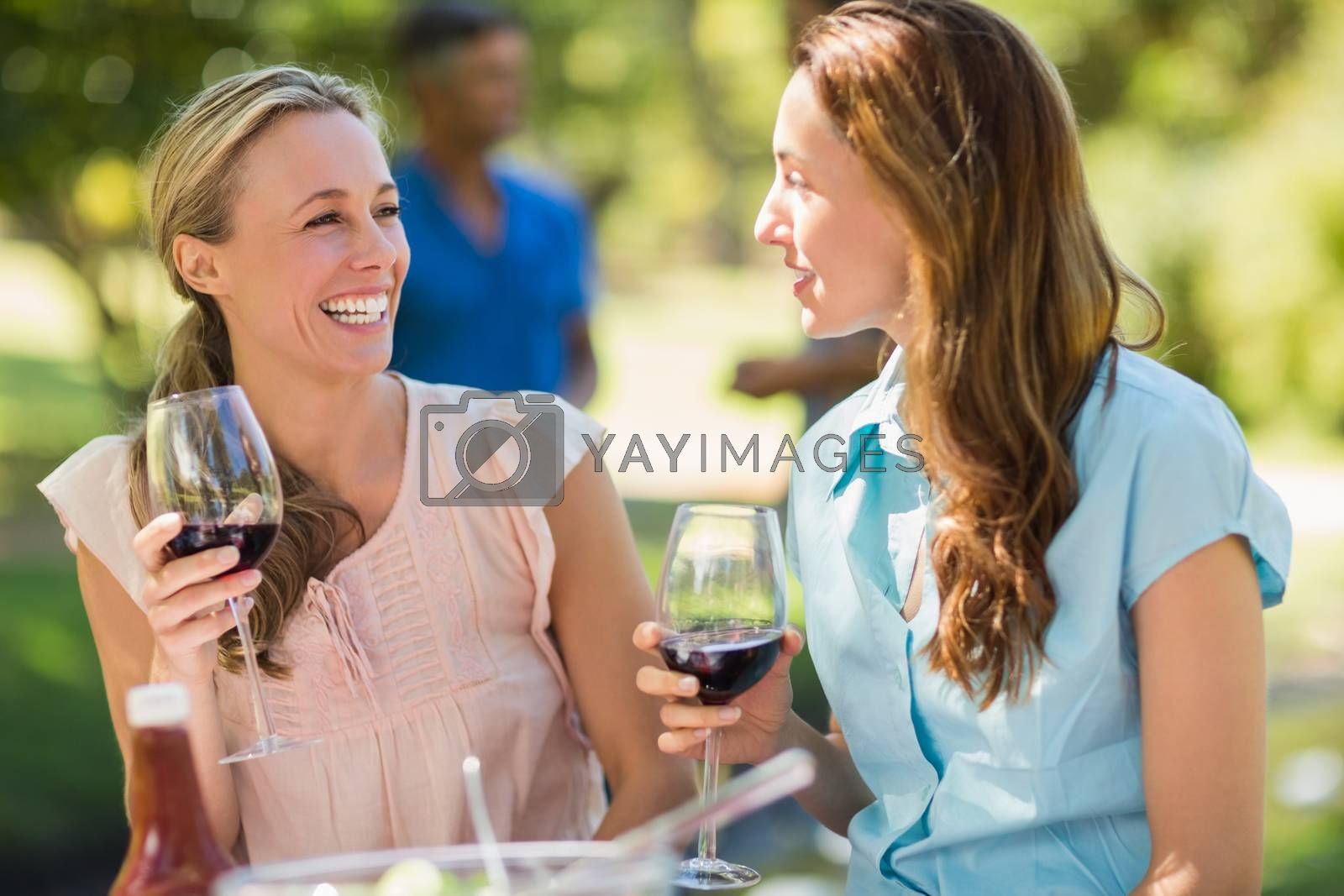 Happy friends drinking at the park on a sunny day