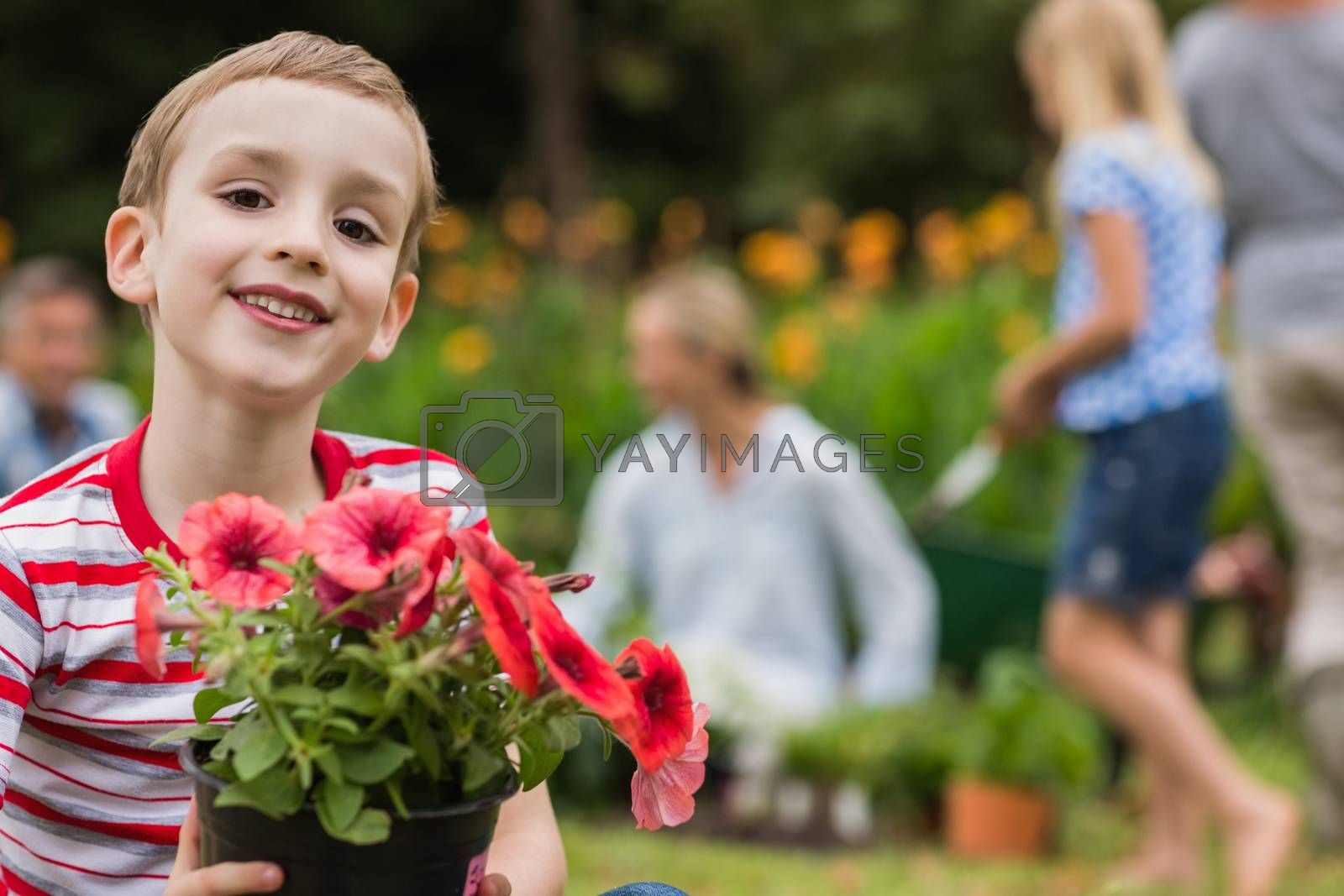 Young boy sitting with flower pot on sunny day