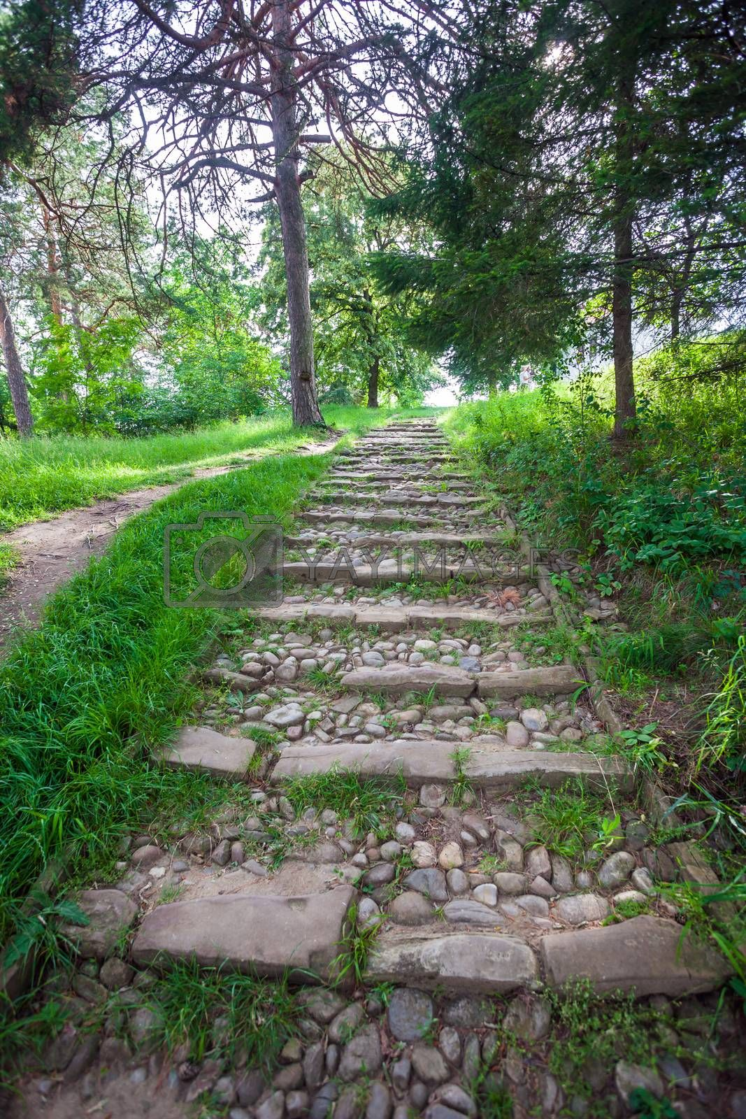 River rough stones paved stairs