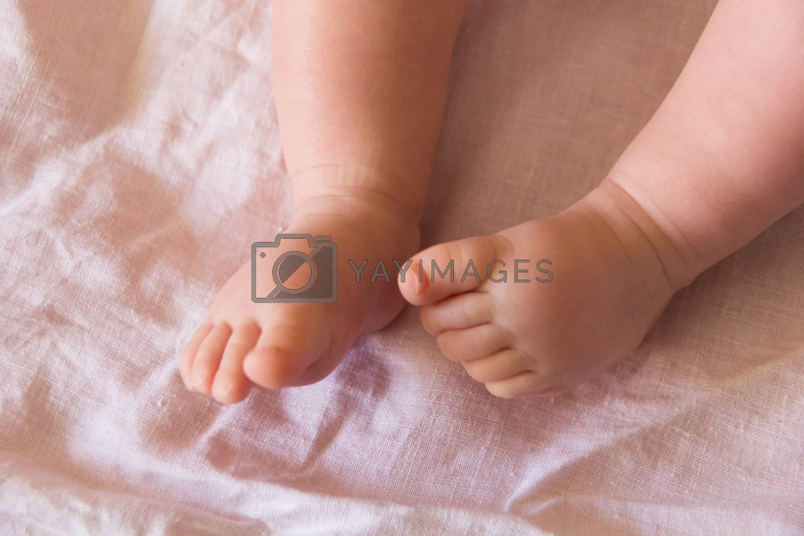 Feet of newborn baby