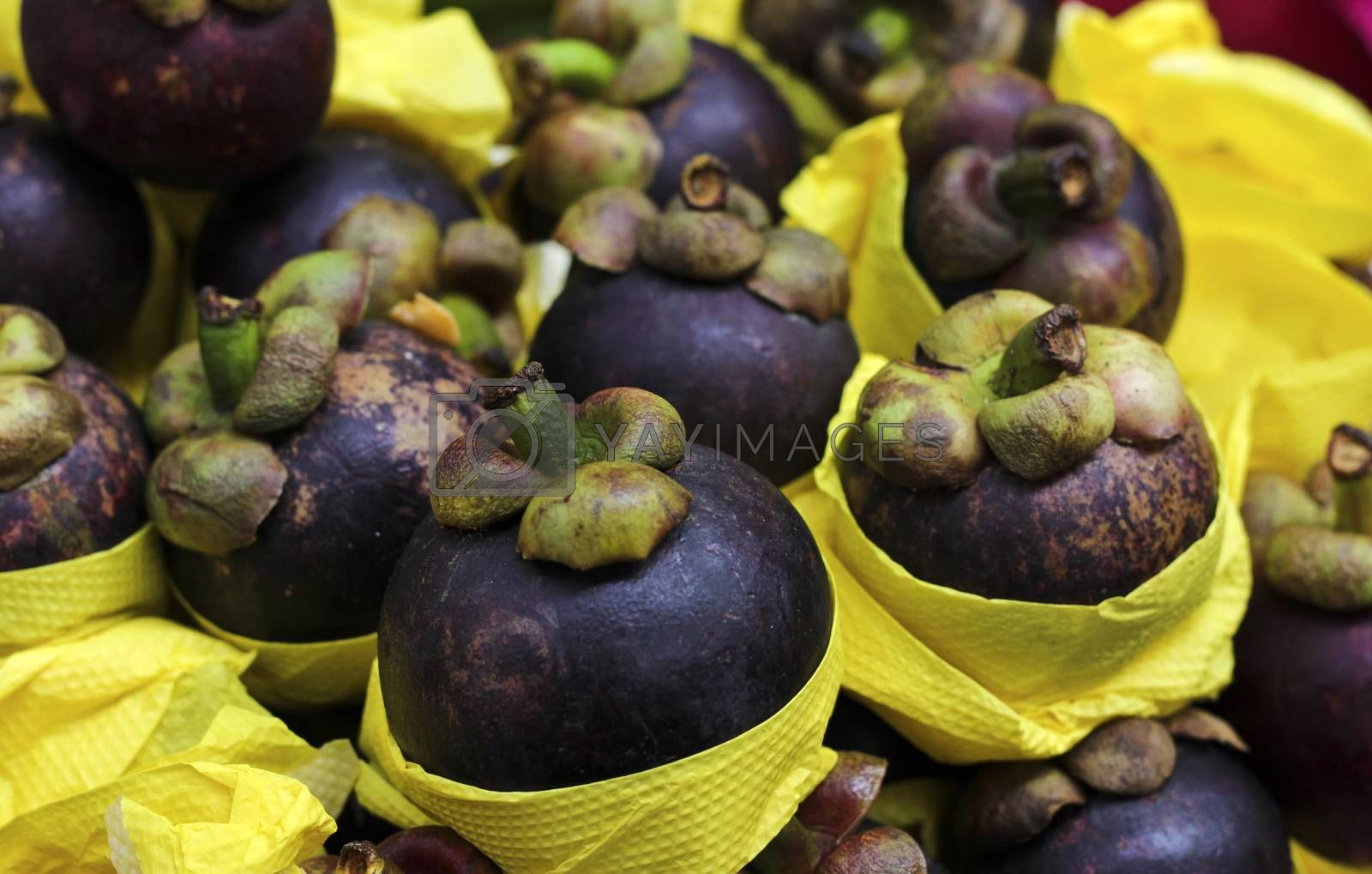 Exotic fruit purple mangosteen exposed in the Market