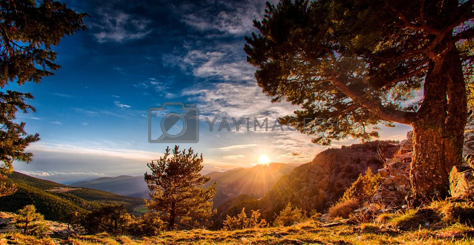 Wonderful nature in Mountains of Andorra