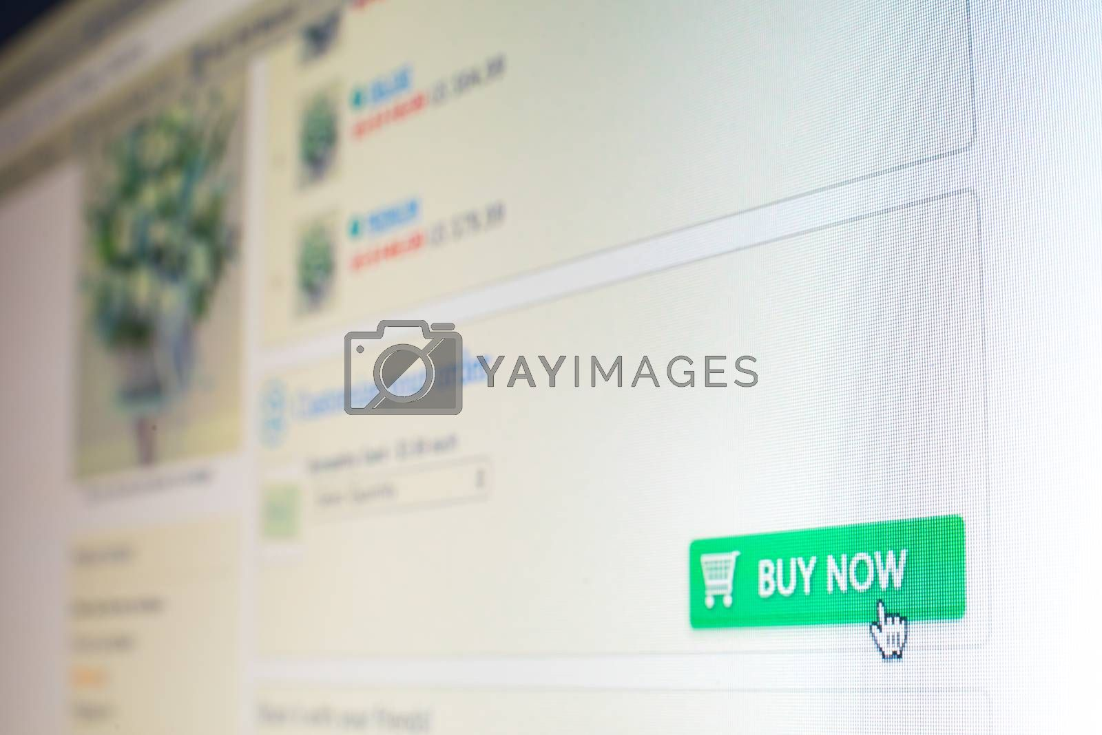 """Royalty free image of Mouse clicking """"buy now"""" button on website by iamway"""