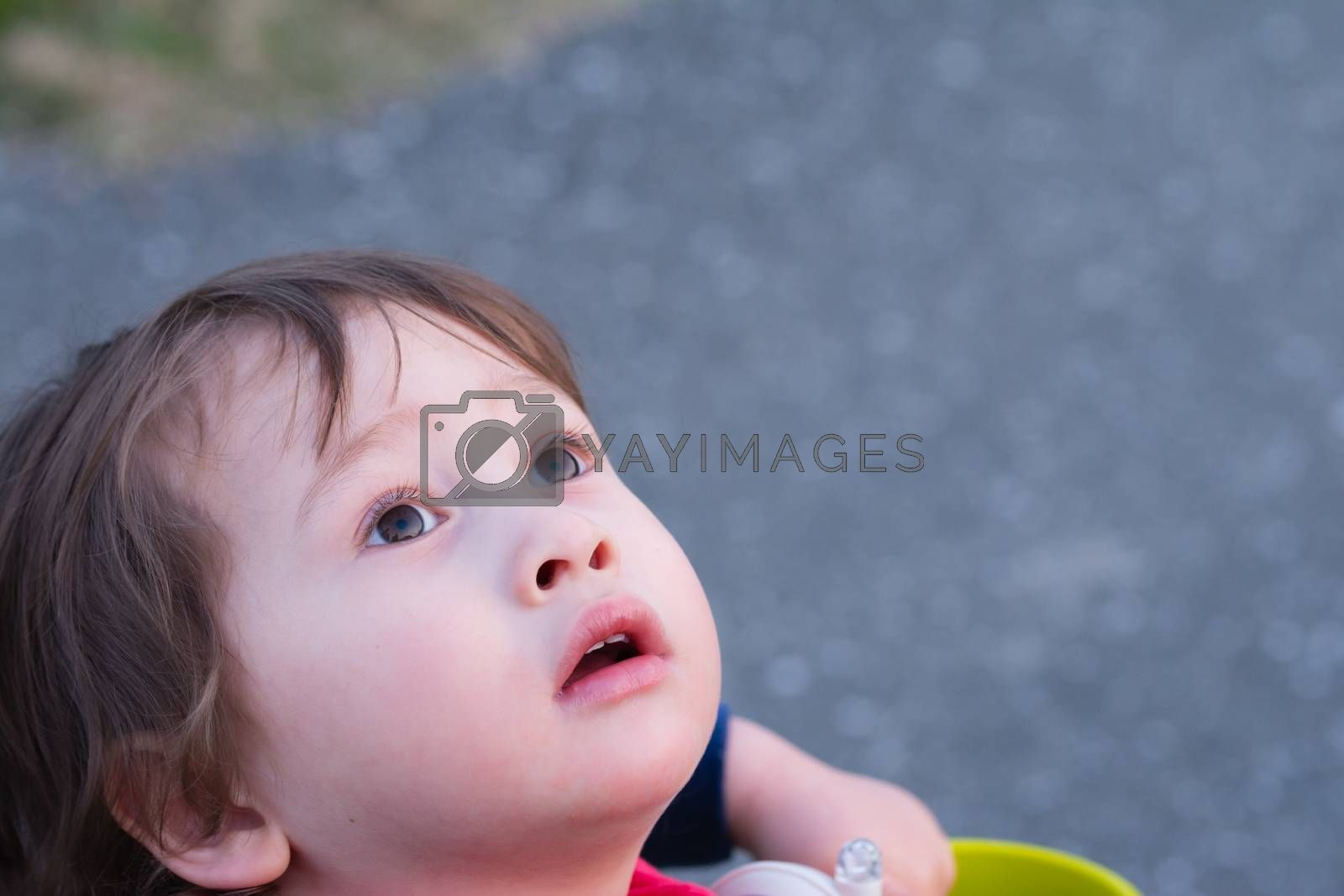 A 2 year old boy staring off into the sky.