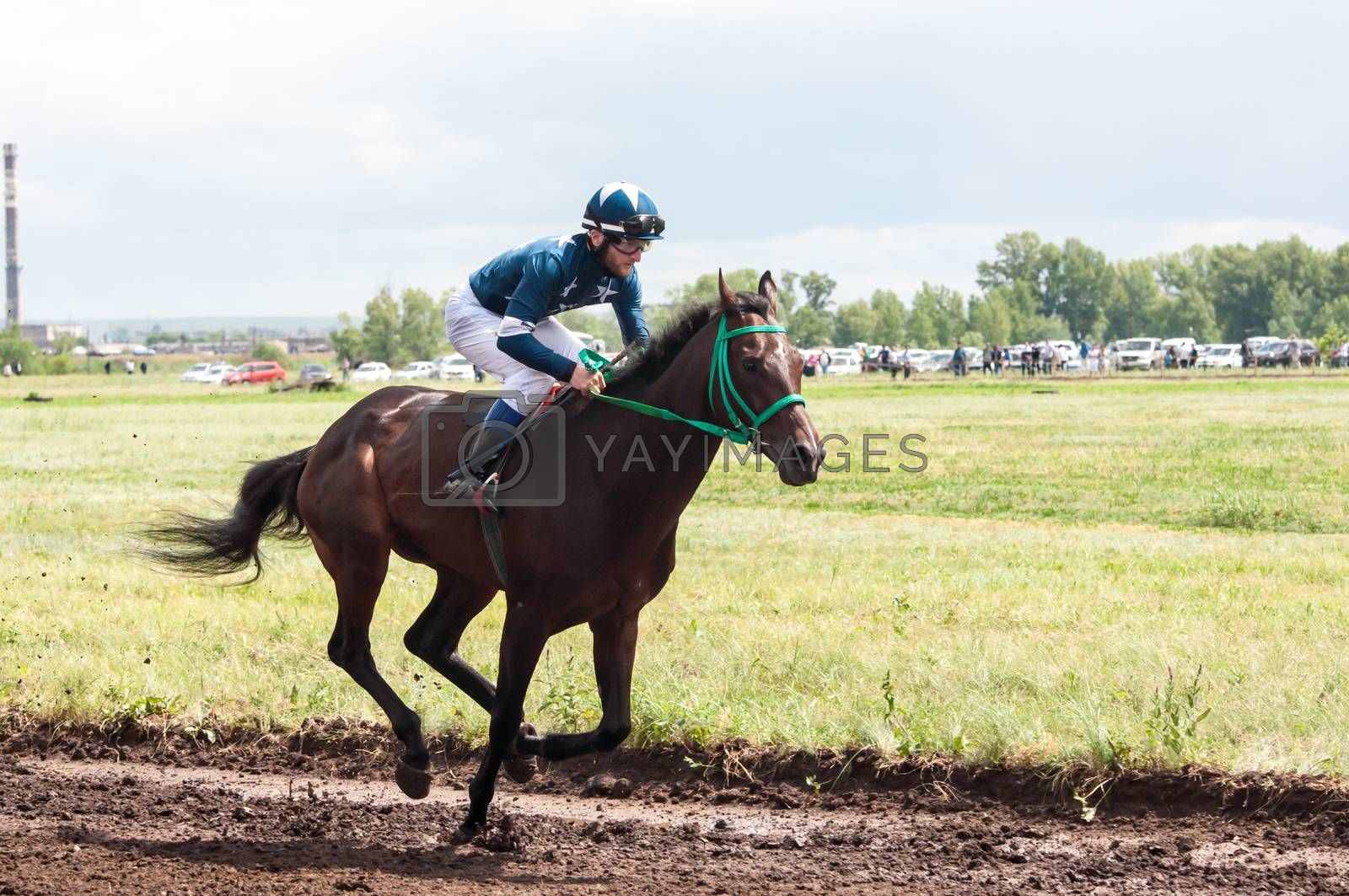 Royalty free image of Horse racing.  by 0608195706081957