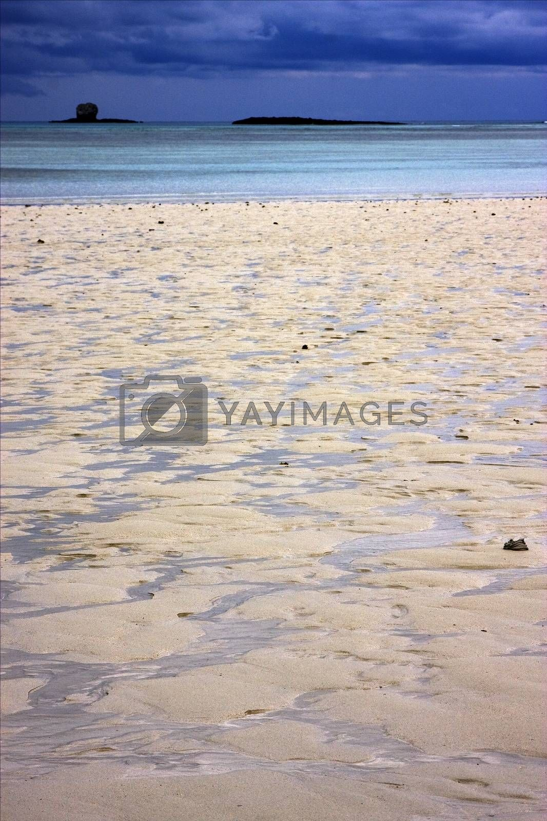 Royalty free image of  in the indian ocean by lkpro