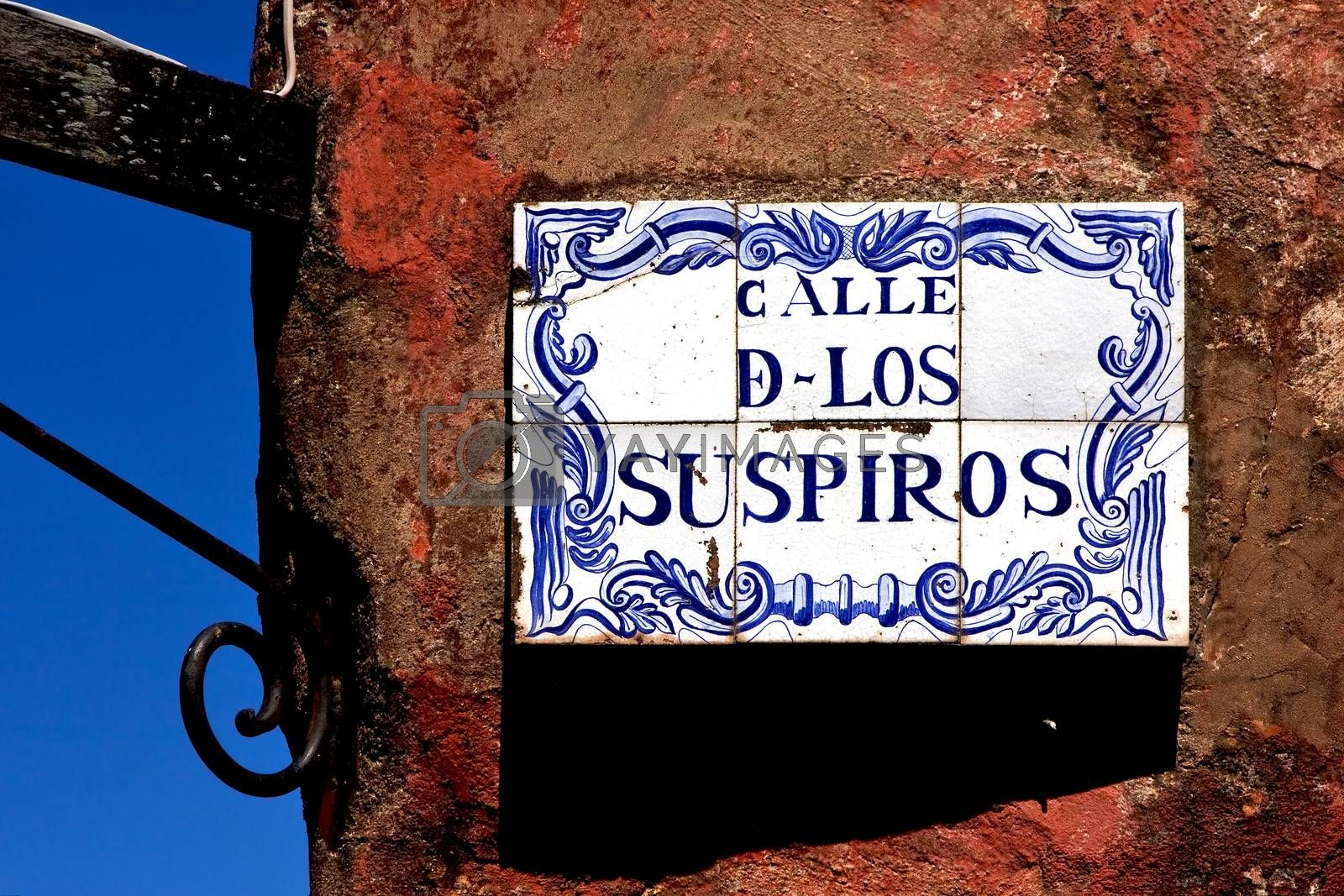 Royalty free image of plant and a wall in calle de los suspiros by lkpro