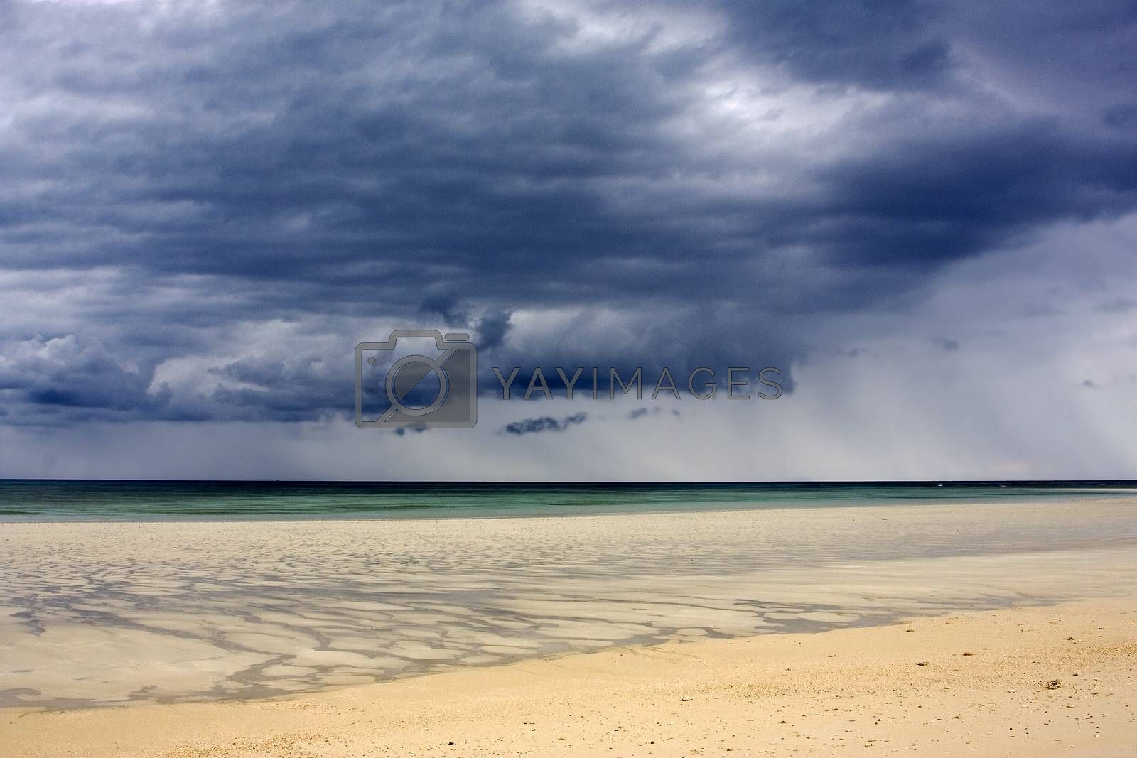 Royalty free image of sandy beach by lkpro