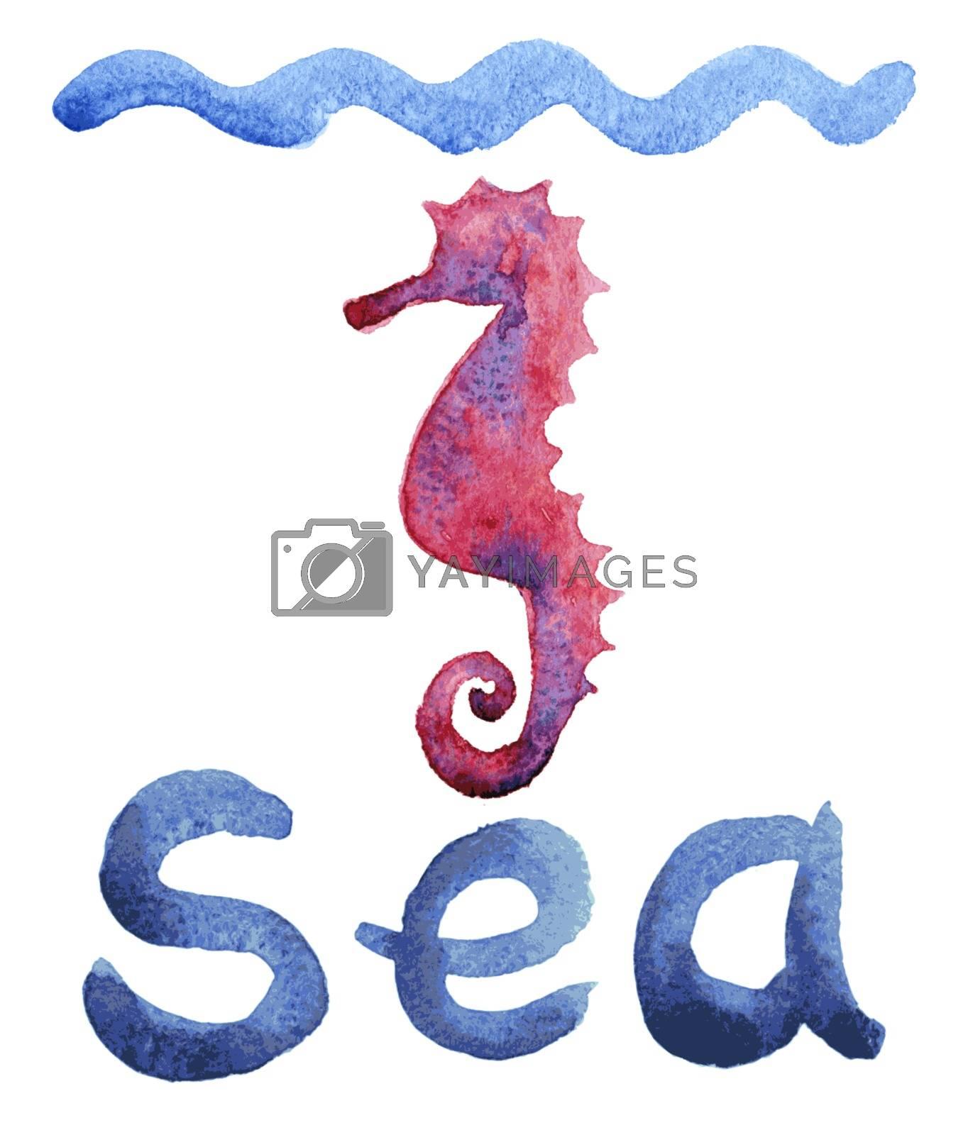 Royalty free image of Hand Painted Seahorse.  by OlgaBerlet