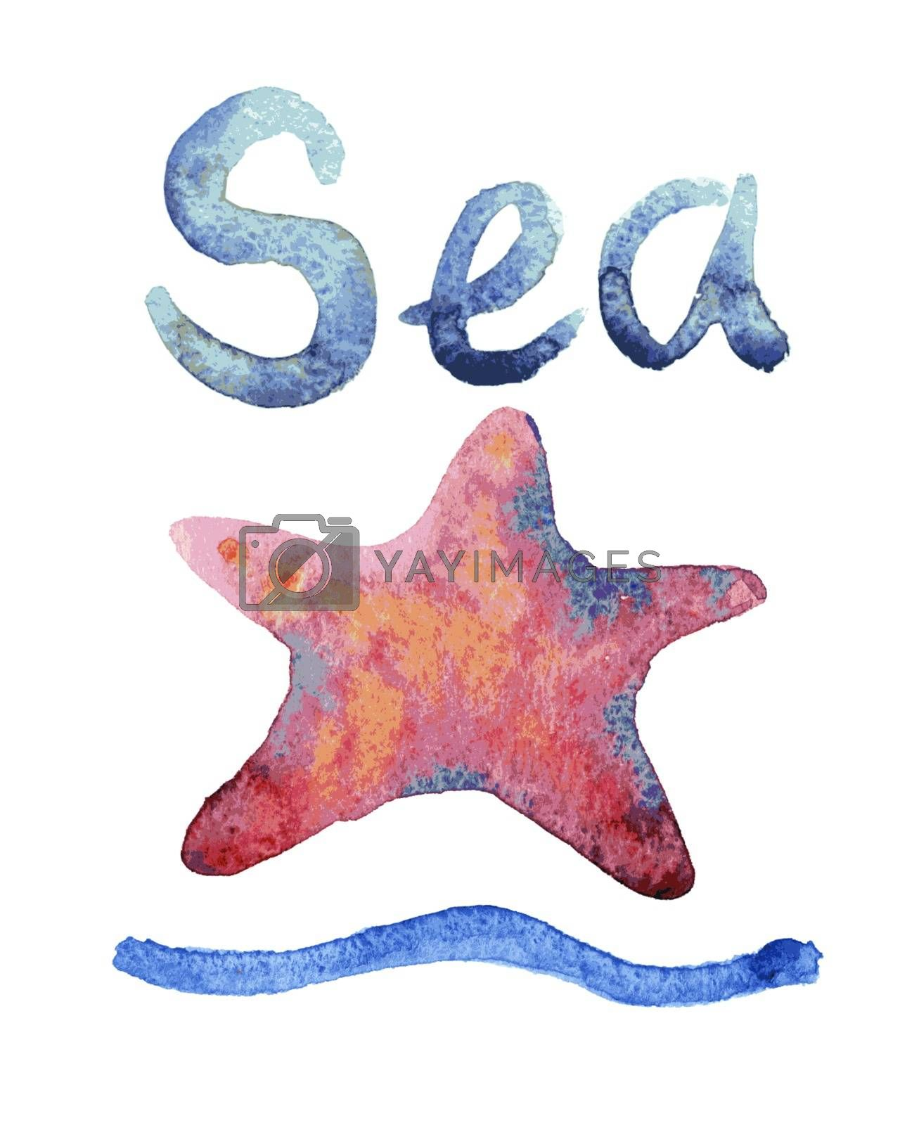 Royalty free image of Set of hand drawn watercolor starfishes  by OlgaBerlet