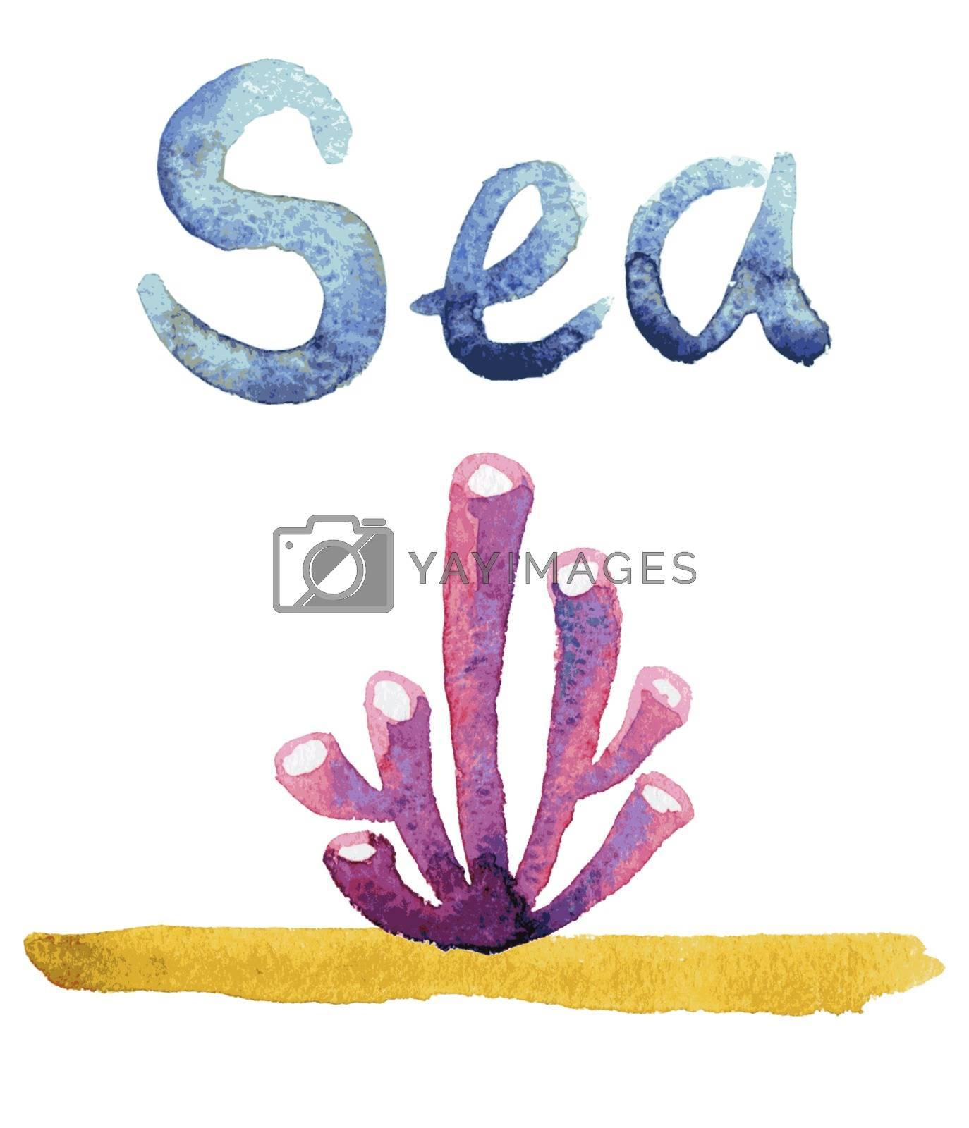 Royalty free image of Watercolor sea sponge by OlgaBerlet