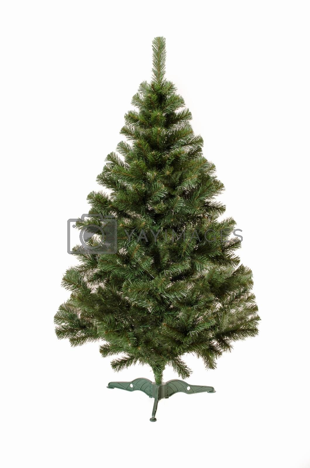 Royalty free image of Artificial Christmas tree with isolated background by Morfey713