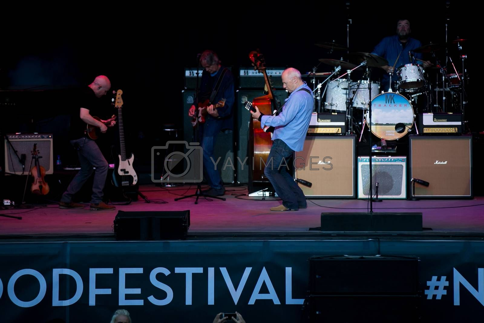 Royalty free image of Mark Knopfler by paulw