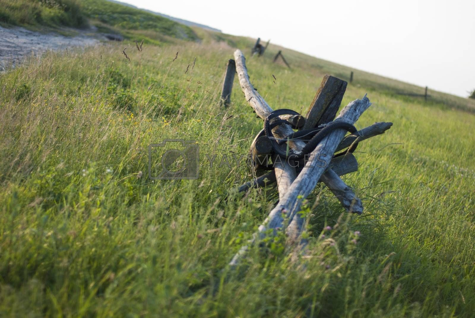 Royalty free image of Old fence in field by Morfey713