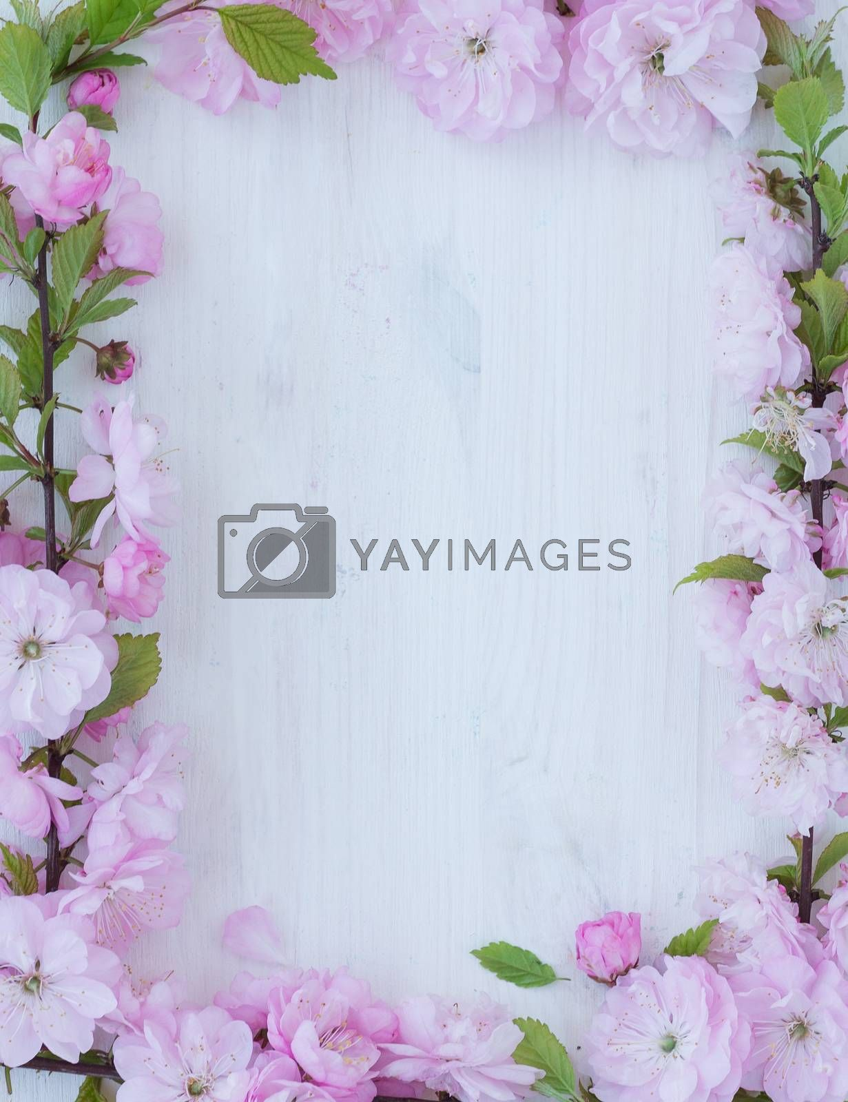 Royalty free image of Flowers frame on wooden background by vlad_star
