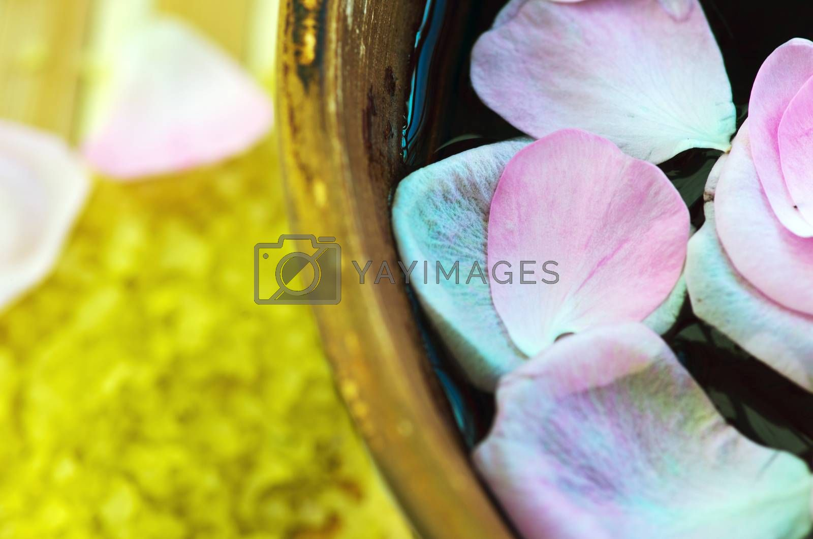 Royalty free image of Health care background made of many still-life elements by dolnikow