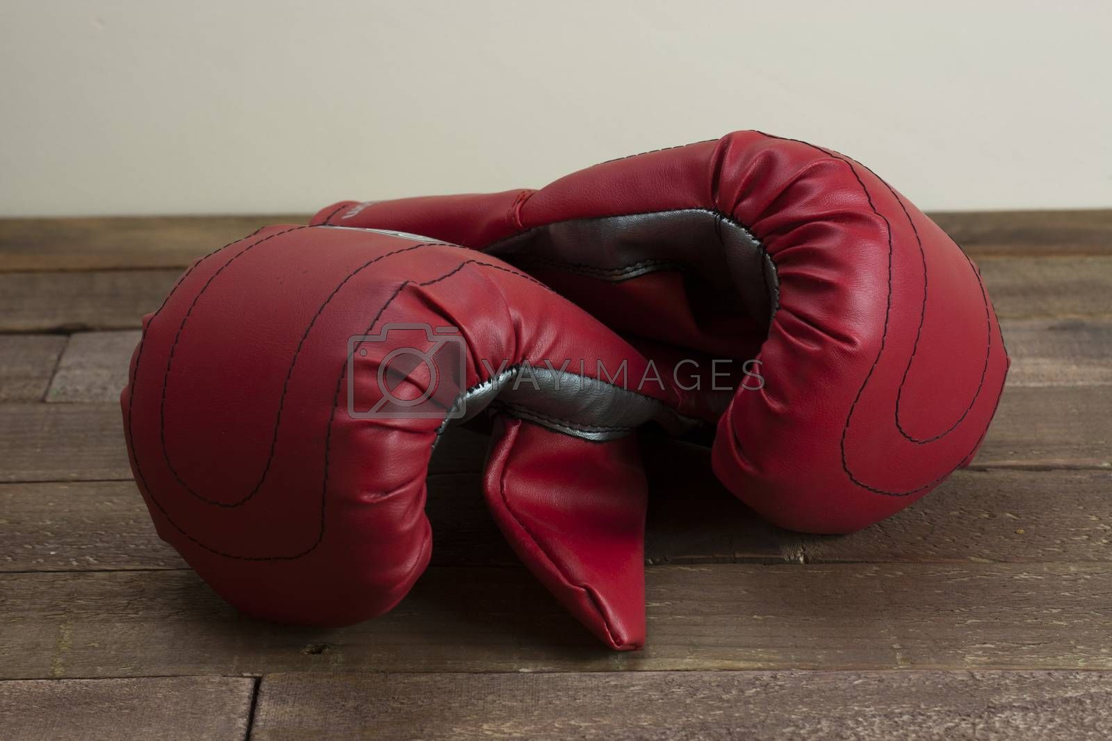 Royalty free image of Red and silver boxing gloves  by christopherhall