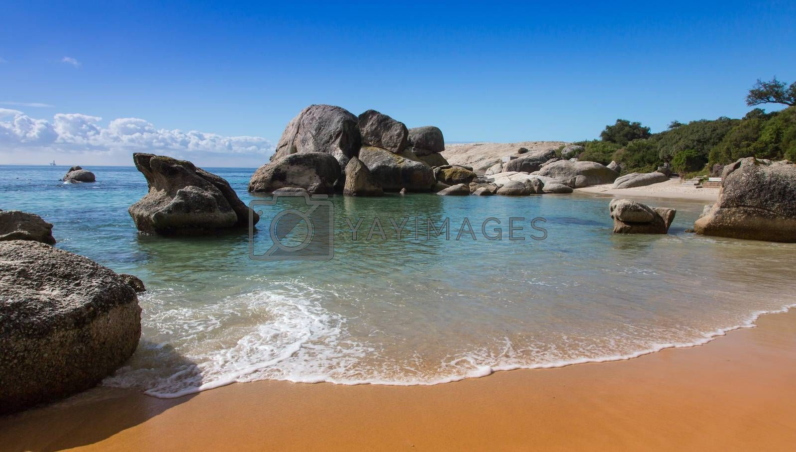 Royalty free image of Boulders Beach in Cape Town by fouroaks