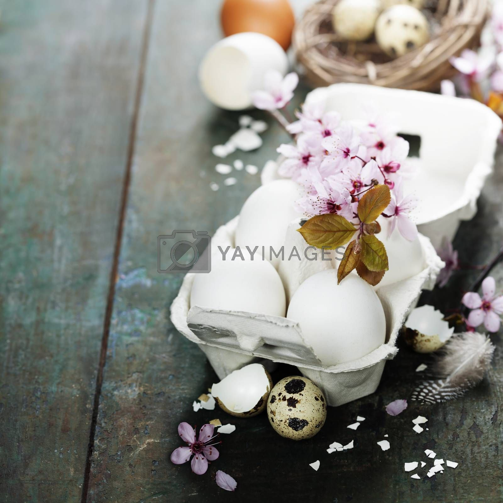 Easter eggs and spring cherry blossoms on wooden table