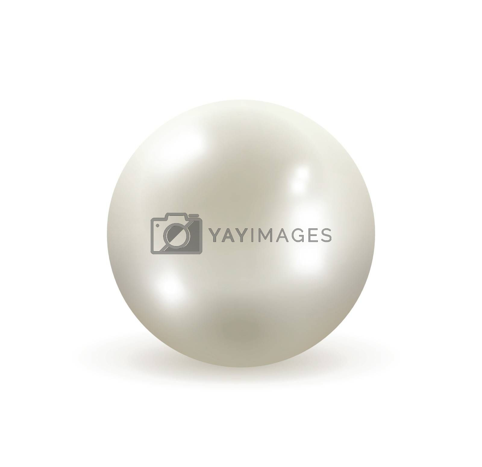 Pearl isolated on white background editable vector illustration