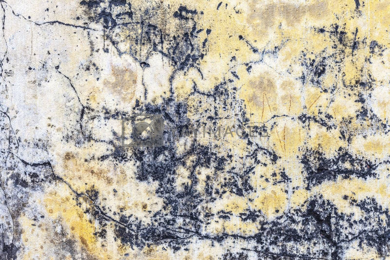 Grungy Concrete background cement old texture wall