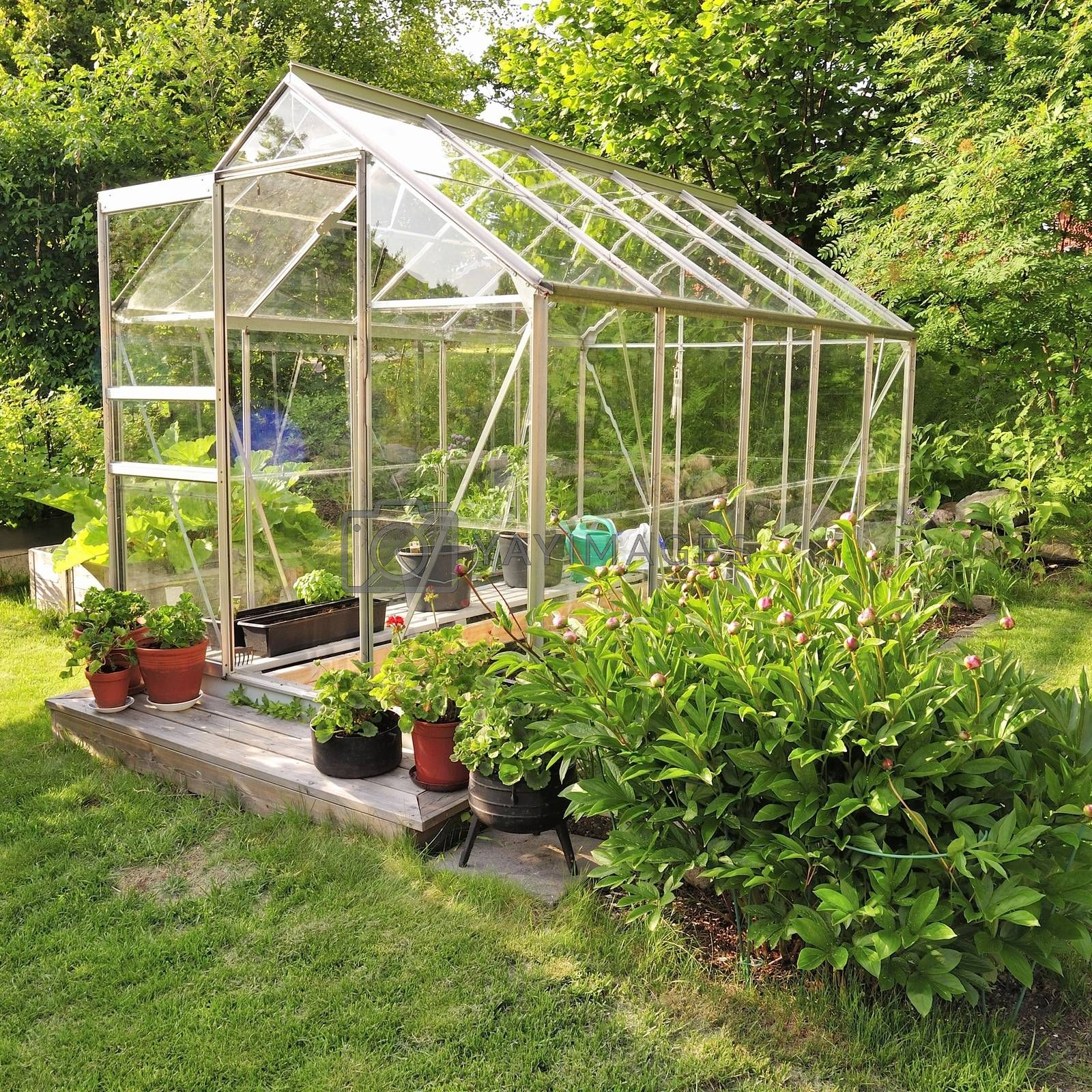 A green house full of flowers and plants.