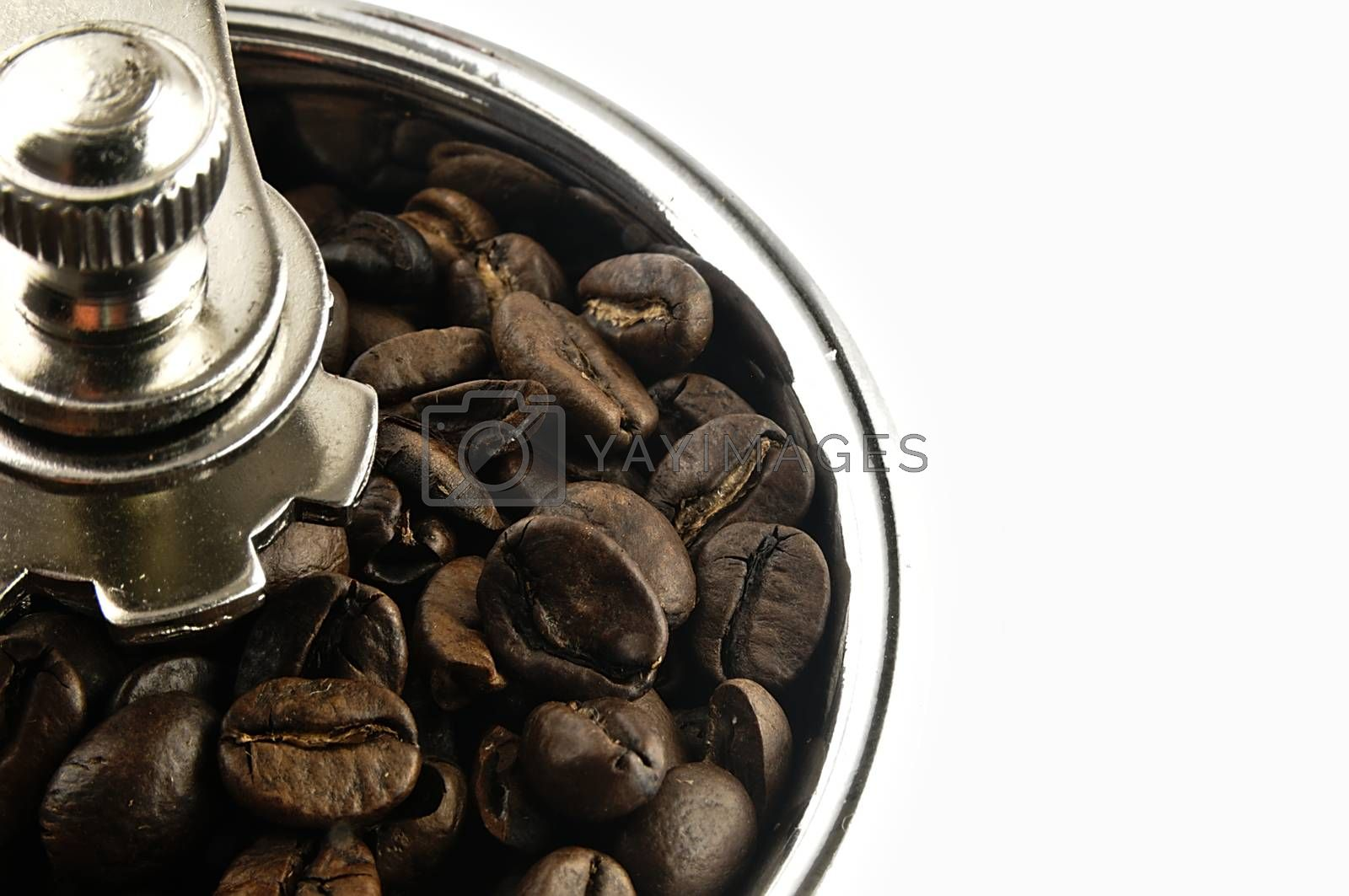 Coffee beans in an old coffee grinder.