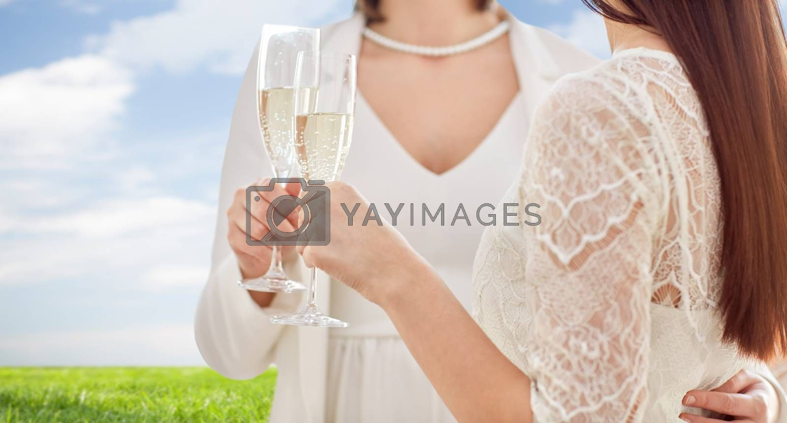 people, homosexuality, same-sex marriage, celebration and love concept - close up of happy married lesbian couple holding and clinking champagne glasses over blue sky and grass background