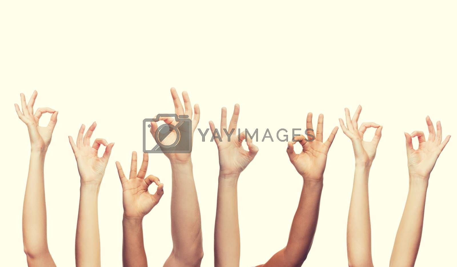 gesture and body parts concept - human hands showing ok sign