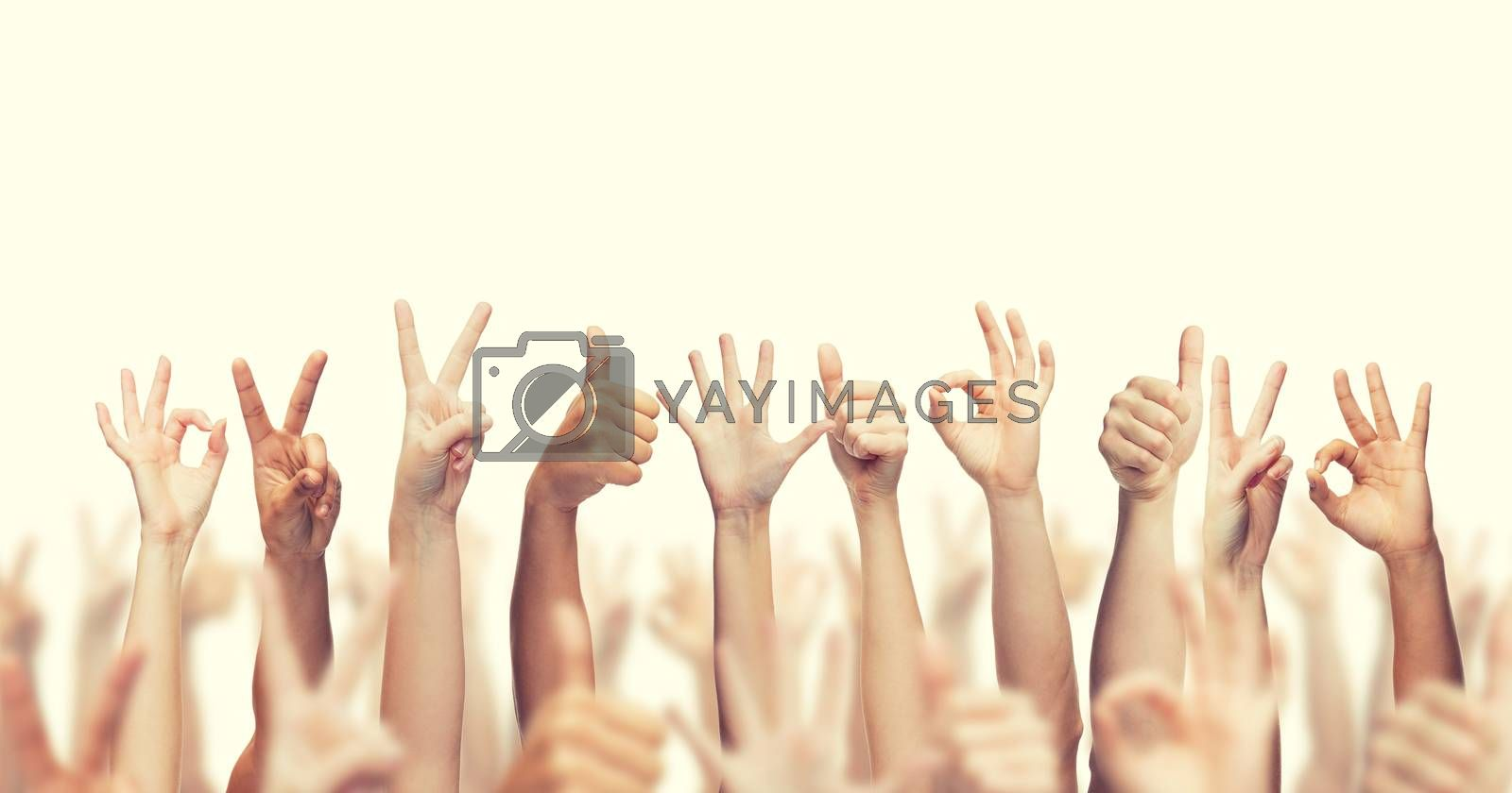 Royalty free image of human hands showing thumbs up, ok and peace signs by dolgachov