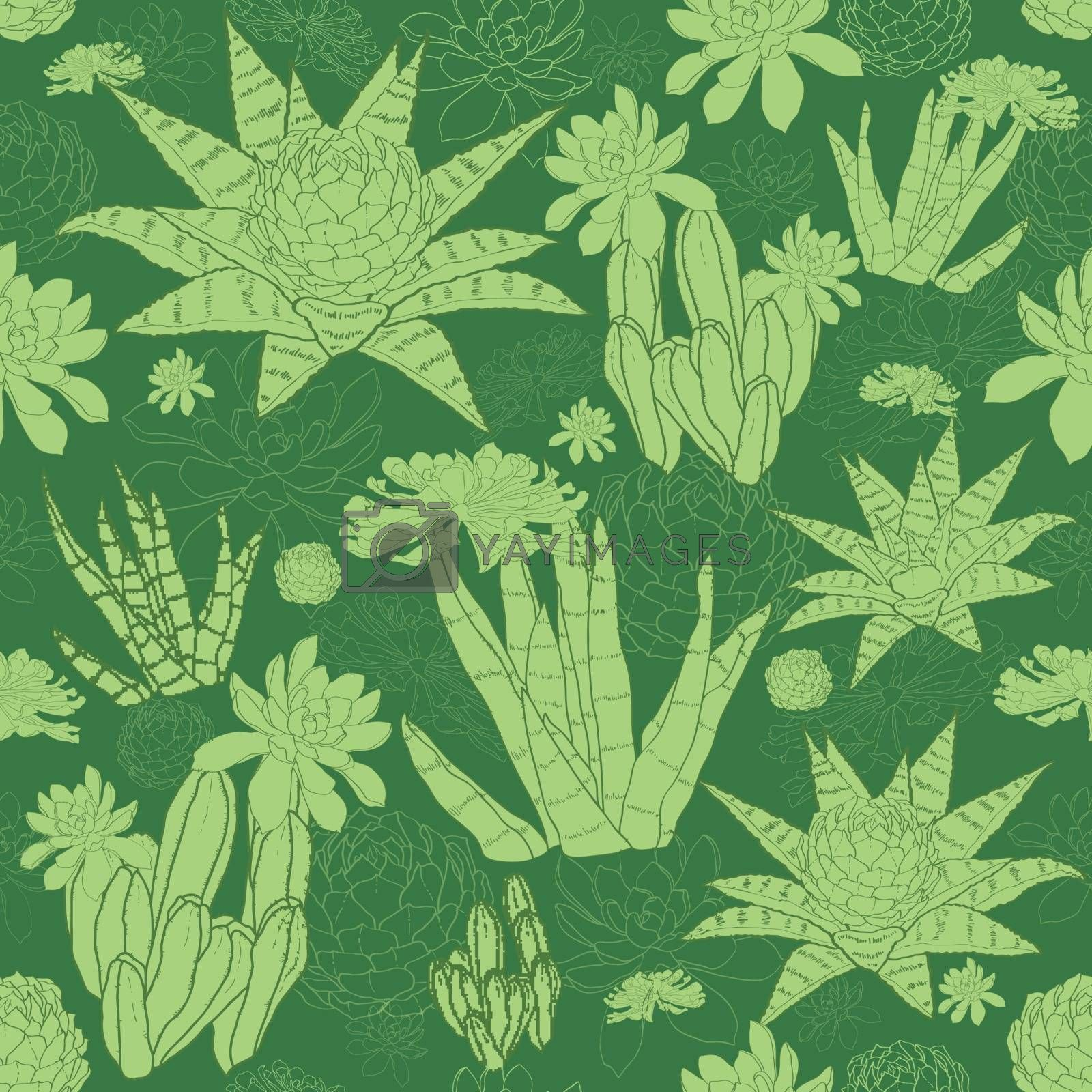 Royalty free image of Vector Green Lineart Succulents Seamless Pattern by Oksancia