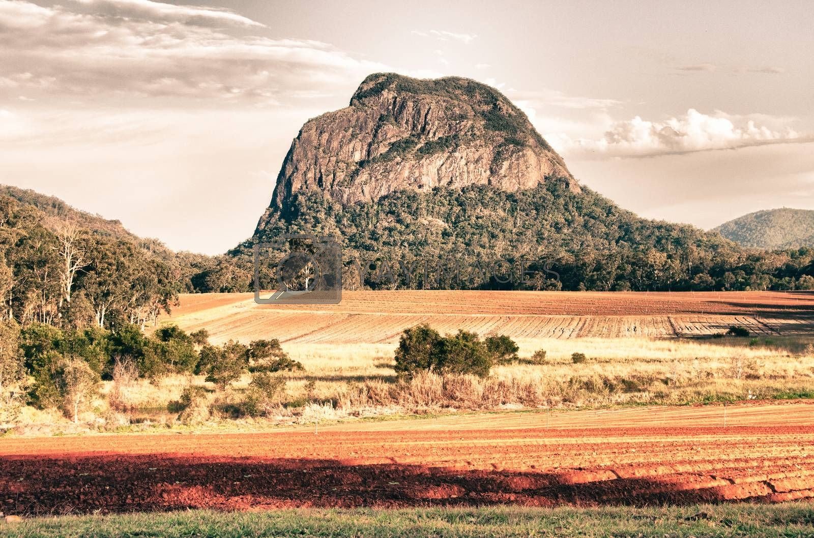 Countryside in Queensland, Australia