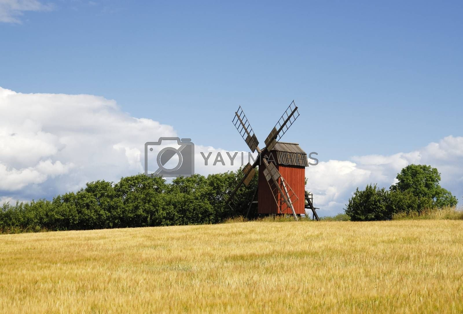Windmill with field in a typical Swedish setting. Windmill is located in Öland, Sweden.