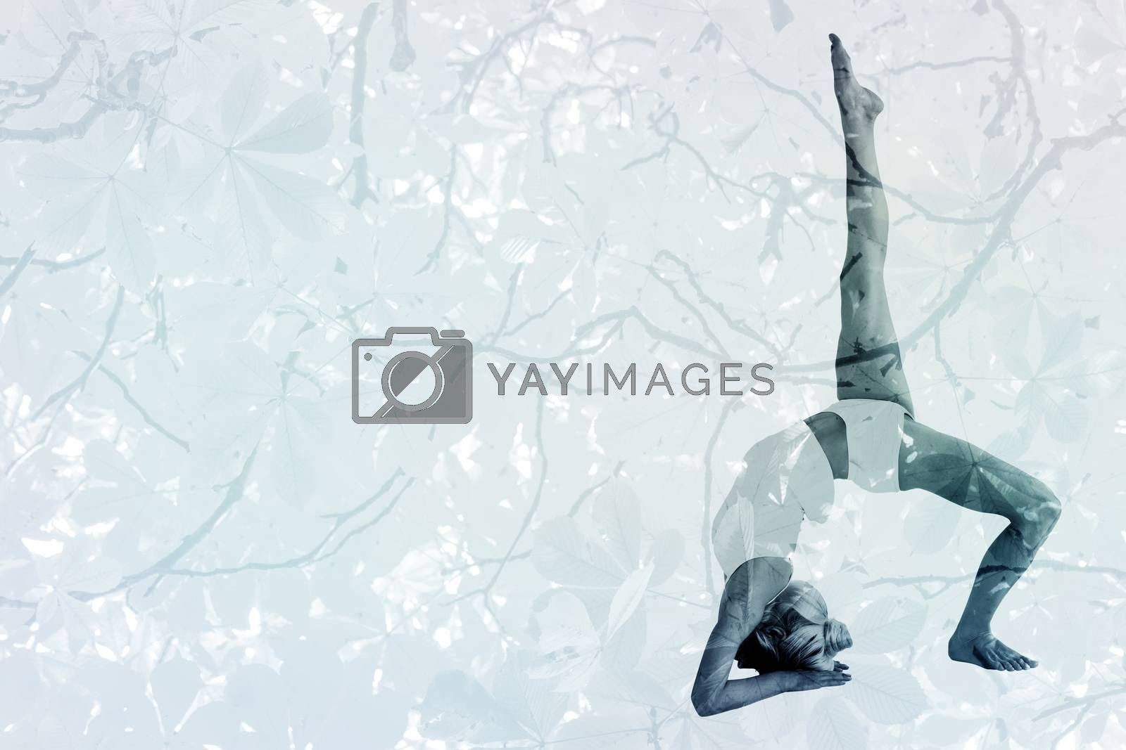 Sporty woman stretching body with raised leg against branches and autumnal leaves
