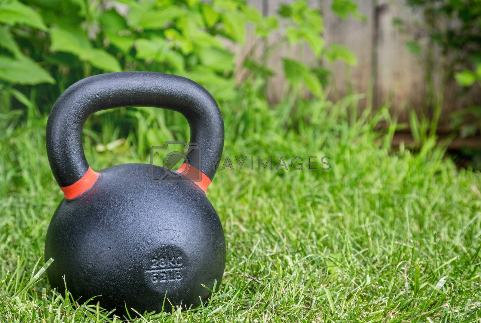 heavy iron competition kettlebell (62lb - 28 kg) on green grass in a backyard - outdoor fitness concept
