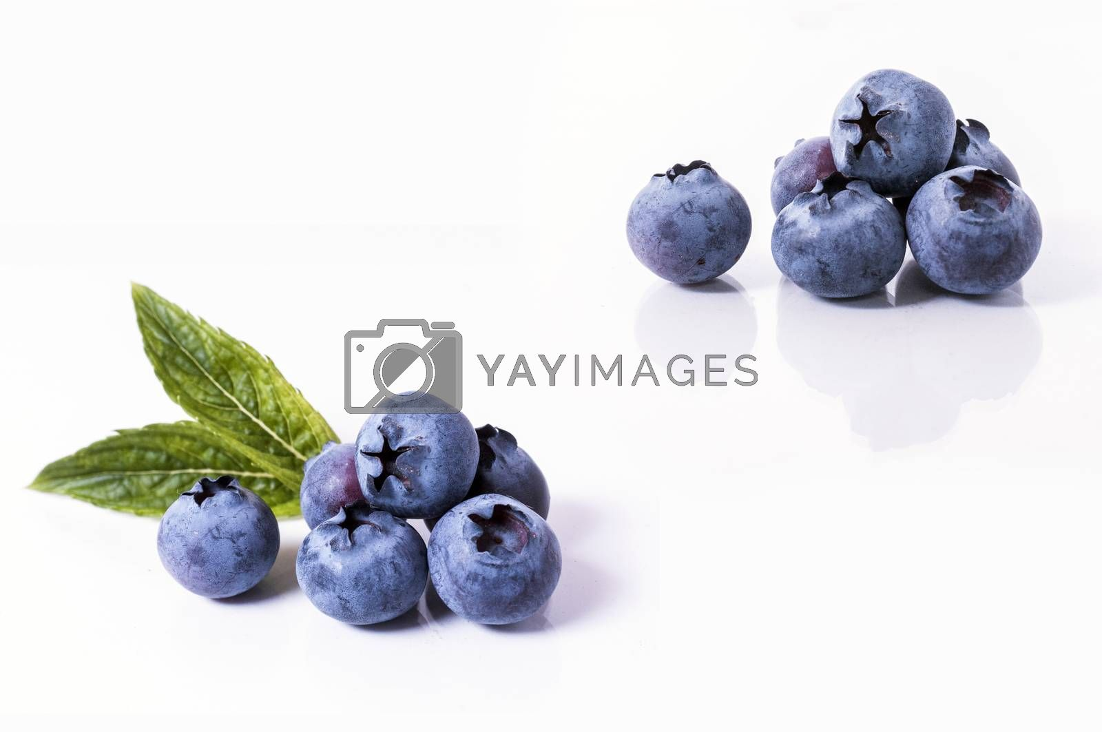 Blueberry isolated on white background.