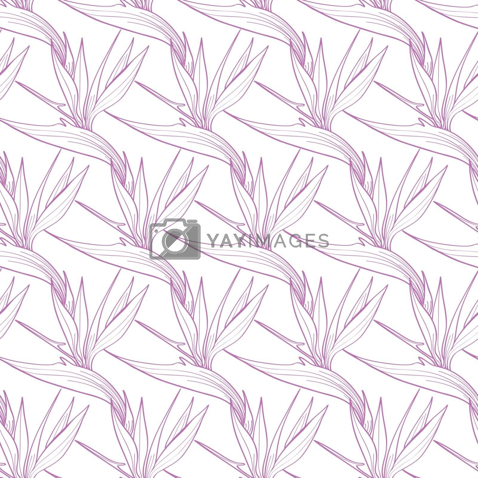 Vector Birds of Paradise Flowers Seamless Pattern graphic design