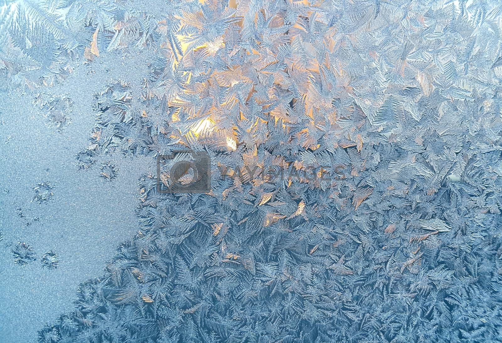 Ice pattern on winter glass by dink101