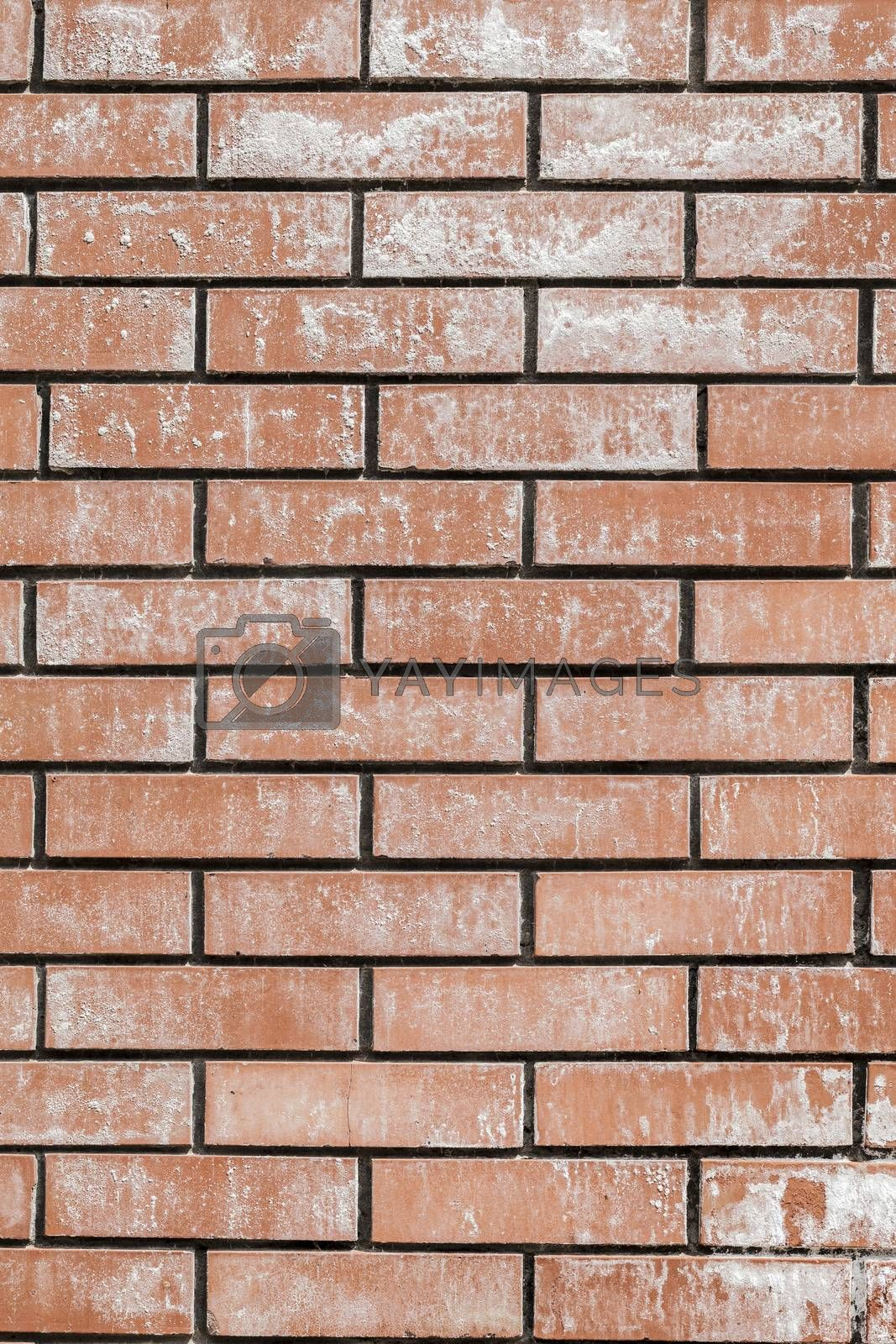 The old grunge red brick wall background