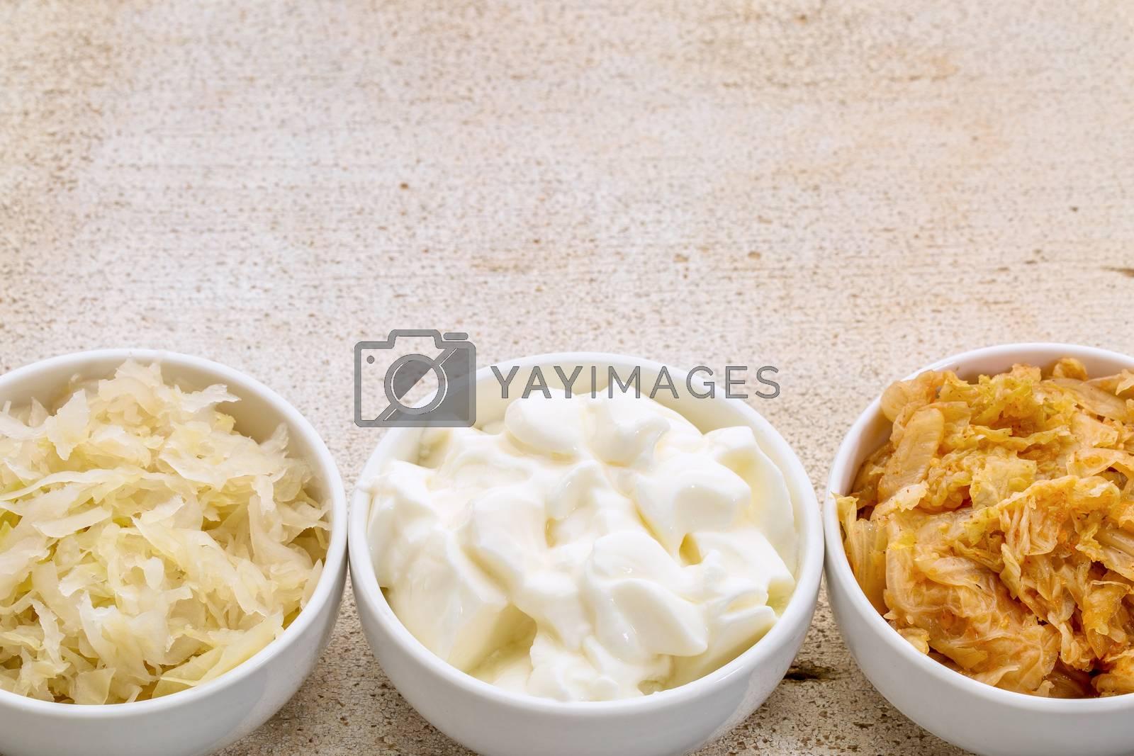 sauerkraut, kimchi and yogurt - popular probiotic fermented food - three ceramic bowl against rustic wood with a copy space