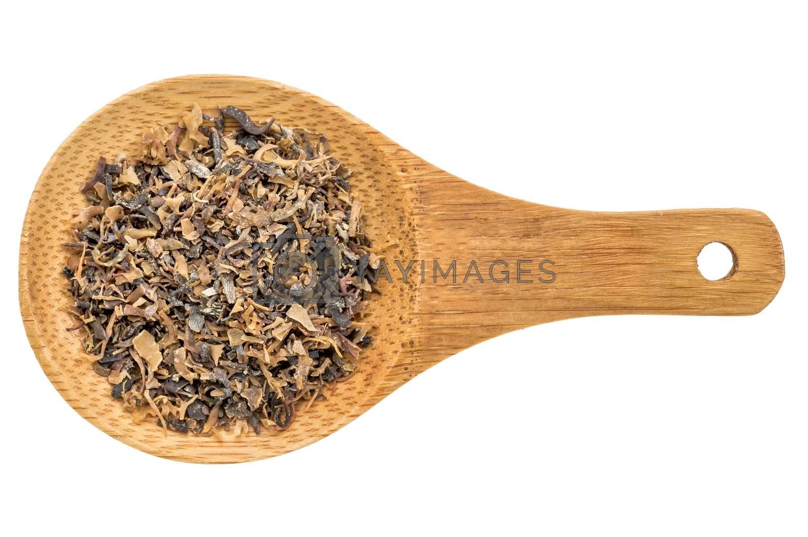 Irish moss seaweed - top view of a wooden spoon isolated on white
