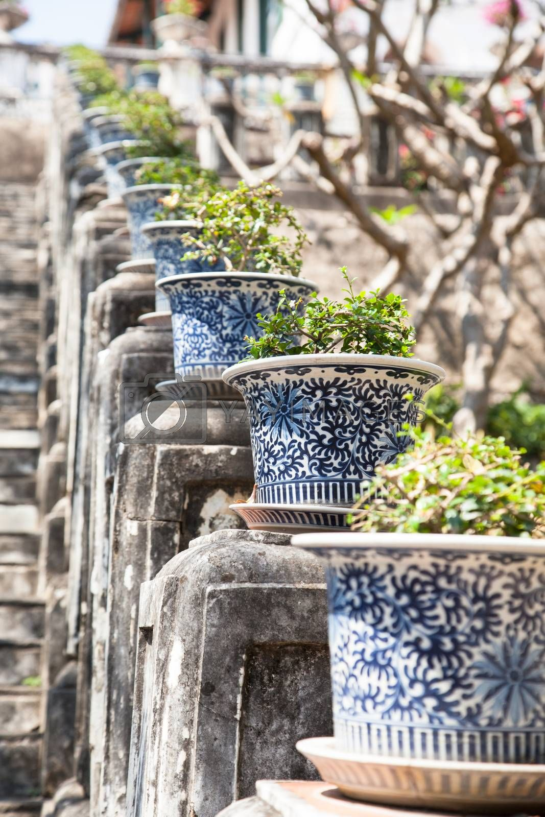 Potted plants on a railing in a park along the sidewalks.