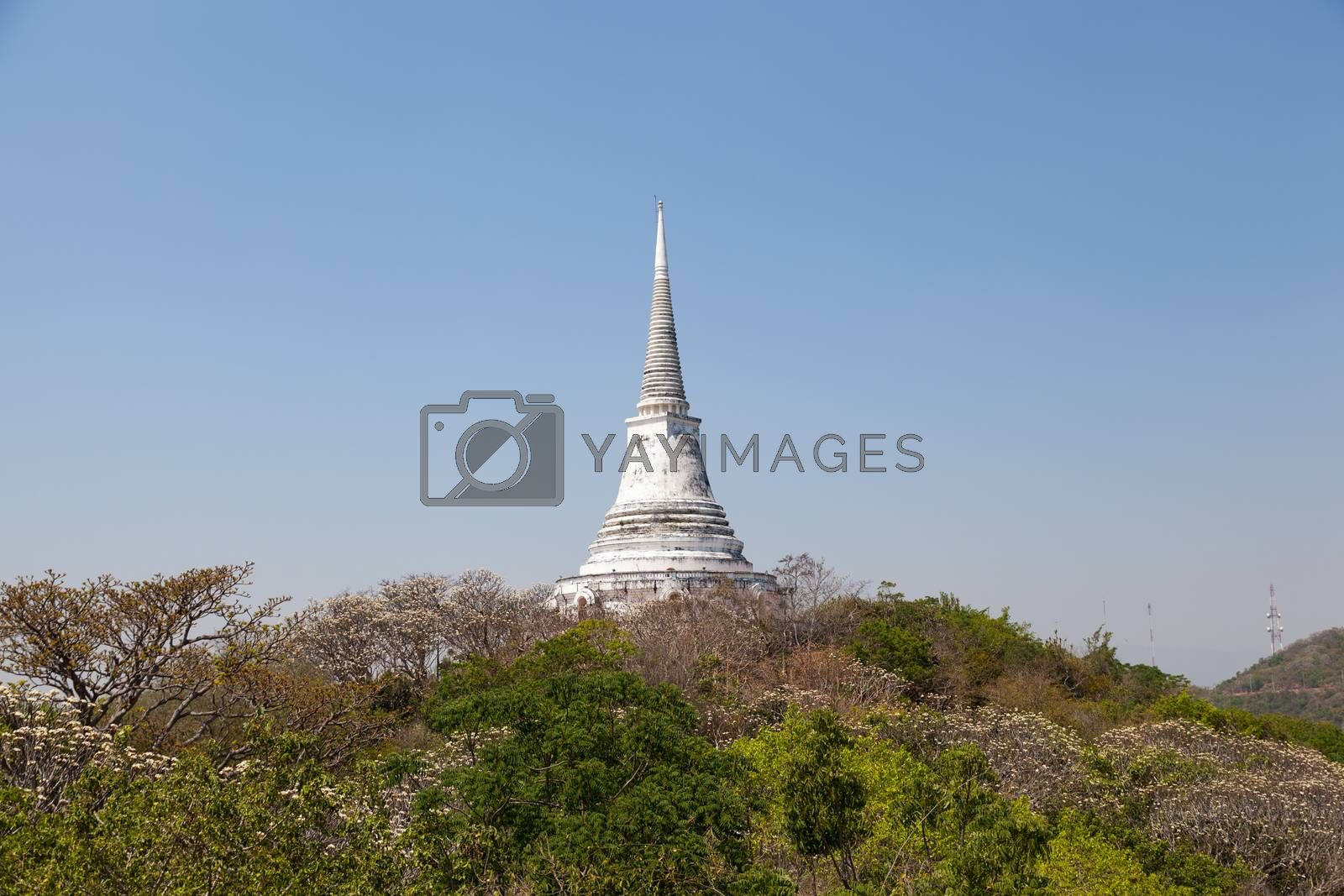 Temple and Pagoda on the high peaks. With trees A clear sky