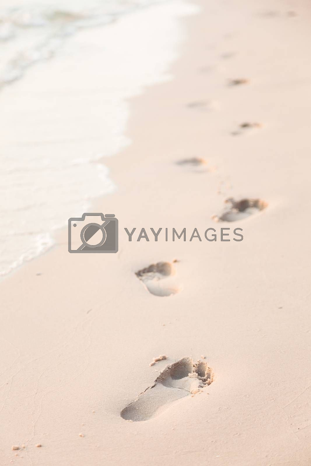 Footprints on the beach by a454