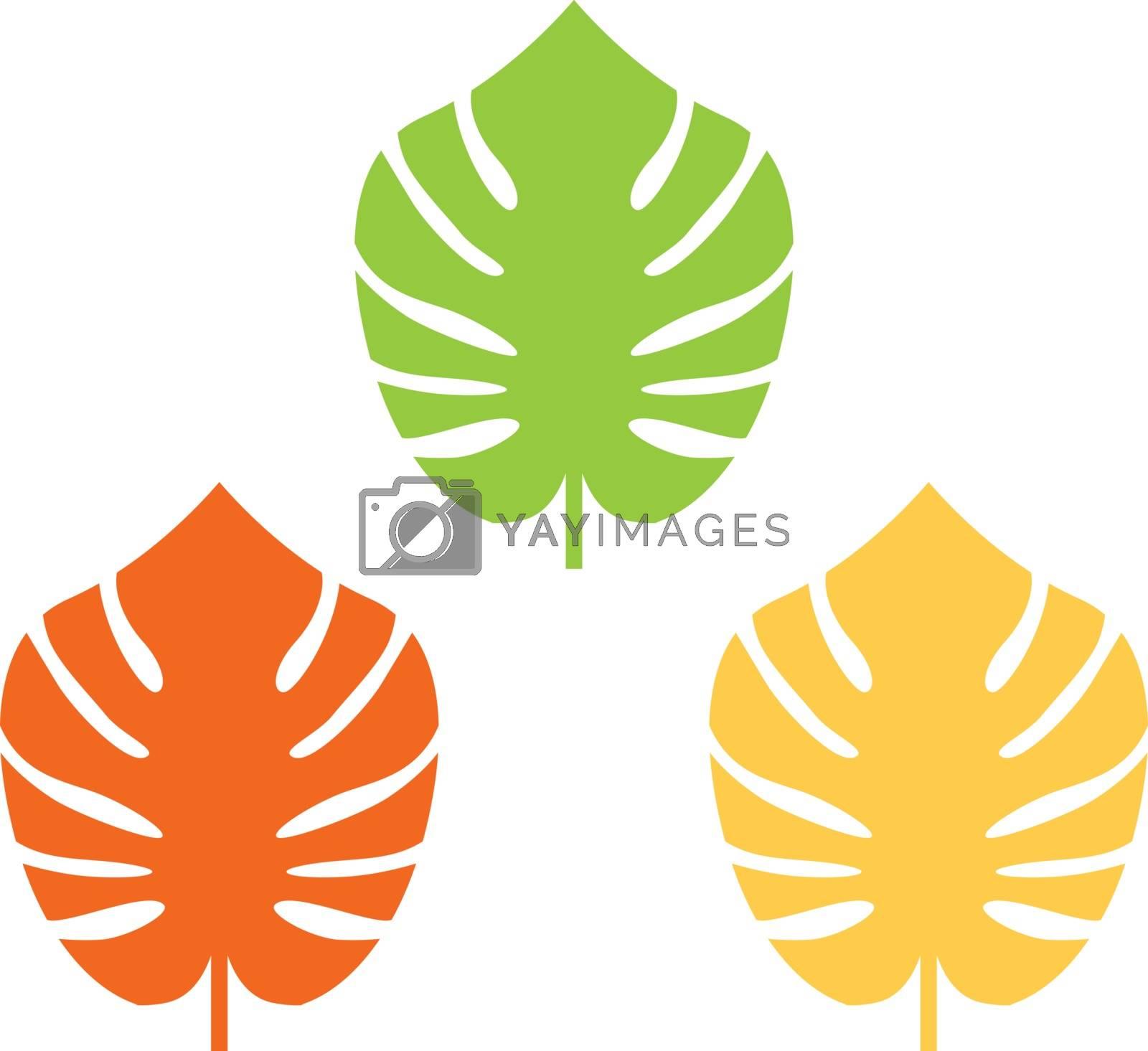 Exotic leaves set. Vector cartoon Illustration
